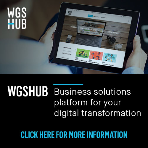 WGSHub - IT Consulting & Business Digital Transformation Platform